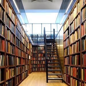 Библиотеки Ферзиково